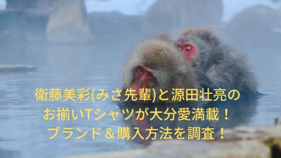 衛藤美彩(みさ先輩)大分温泉Tシャツのブランド&購入方法を調査!