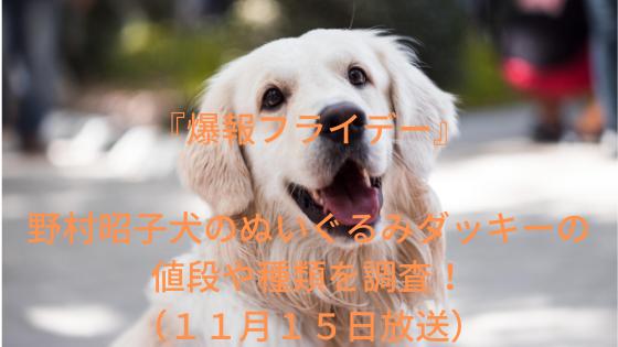 『爆報フライデー』野村昭子犬のぬいぐるみダッキーの値段や種類を調査!(11月15日放送)