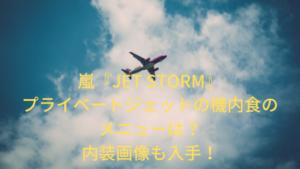嵐も使用!プライベートジェットの機内食のメニューは?内装画像も入手!