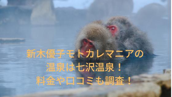 新木優子モトカレマニアの温泉の場所は七沢温泉!料金や口コミも調査!(11月14日放送)