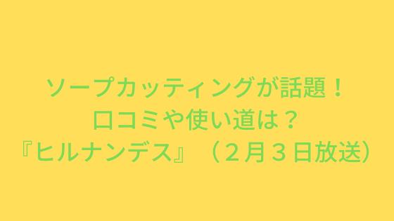 ソープカッティングが話題!口コミや使い道は?『ヒルナンデス』(2月3日放送)